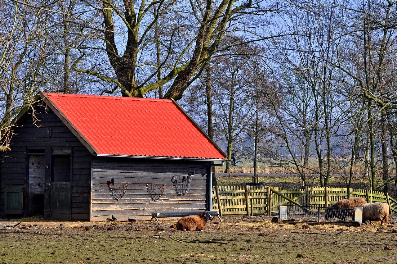 Swedish wooden shed Stewart Timber